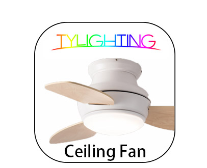 T.Y.L Ceiling Fan TY Lighting Ceiling Fan 天怡風扇燈 天怡吊扇燈