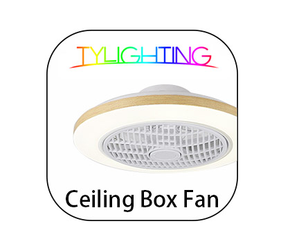 TY Lighting Ceiling Box Fan T.Y.L Ceiling Box Fan 天怡天花鴻運扇燈
